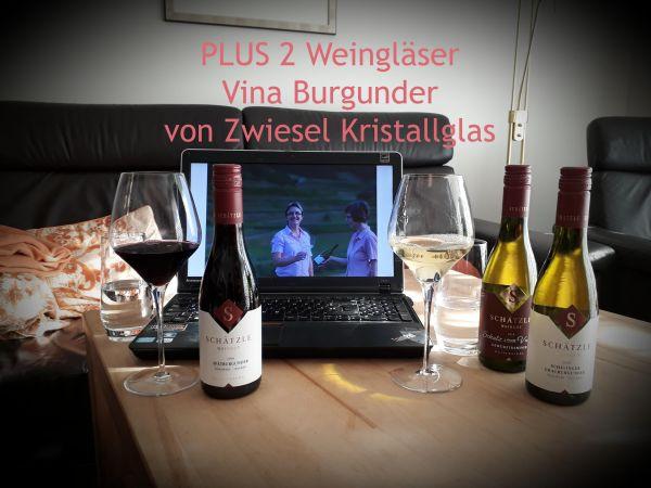 online Weinprobe Weingut Schätzle Kaiserstuhl Angebot